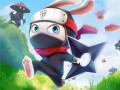 Játékok Ninja Rabbit